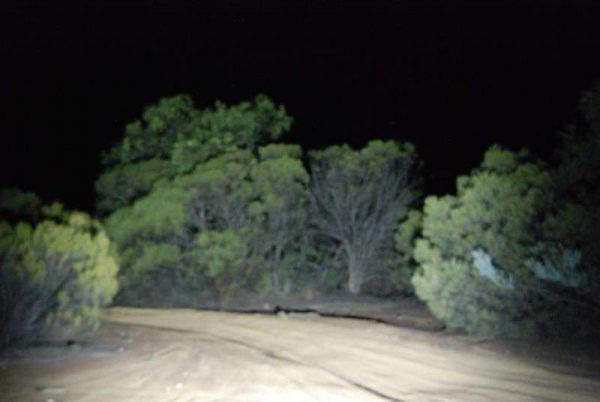 48 Watt Flood Light