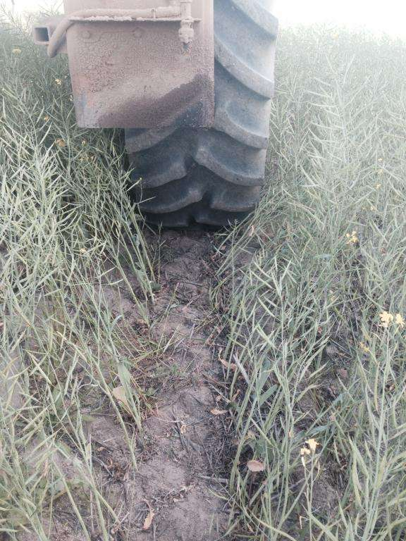 Tridekon Crop dividers